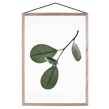 moebe-floating-leaves05-print