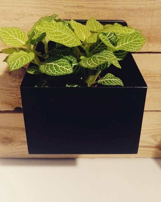 wall-plant-box-fermliving-noir-sitondesign-4